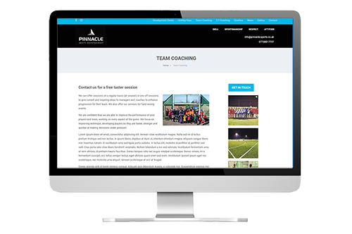 Internal page from the Pinnacle sports website